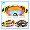 Wholesale Anti-Fog Safety Glasses Snowboard Goggles with Case
