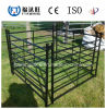 Heavy Duty Iron Pipe Fence for Horse Cattle/Wire Mesh