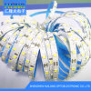 2835 72 LED/ Meter LED Strip Light with High Brightness