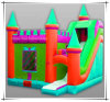 Inflatable Bouncy Castle Amusement Park with Obstacle Toy (CY-M2070)