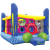 Inflatable Combo Playground Fun City for Amusement Park (FLCA)