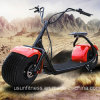 2018 Fat Tire Two Wheel Electric Scooter with Bluetooth