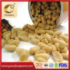 Good Quality Fried Peanut Kernels From China