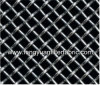 Stainless Steel Wire Mesh/Fence
