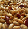 New Crop Roasted Chili Peanut Kernels