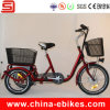 Electric Rickshaw Tricycle (JSE501)
