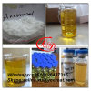 CAS 120511-73-1 Safe Delivery Arimidex Pharmaceutical Products Anastrozol for Anti Cancer