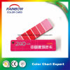 Standard Color Fandeck Card for Architecture Coating Paint
