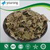 Extract of Mahonia Leaf, Traditional Chinese Medicine, Brown-Yellow Powder