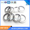 100-120-13 Stainless Steel and Double Lips Air Compressor Oil Seal
