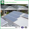 China Hot Sale Greenhouse Manufacturer Commercial Hydroponics PC Sheet Greenhouse