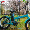 250W Cheap Quick Folding Electric Mountain Bike with En15194 Approved