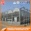 Multi-Span Steel Frame/ Aluminum Profile Polycarbonate Sheet Greenhouse for Fruit