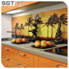 6mm Decoration Low Iron Toughened Digital Printing Glass Kitchen Splashback