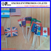 High Quality Polyester Adversiting Cheap Custom Flag (EP-F58408)