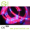 Full Spectrum 5050 LED Flexible Grow Strip with Red Blue Color