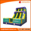 Double Lane Inflatable Dry Slide for Kids (T4-132)