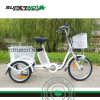 3 Wheel Electric Bicycle with Rear Basket