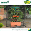 Onlylife Pop-up Small Plants Garden Greenhouse Plant Cover