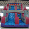 Funny Cartoon Inflatable Bouncer Slide for Kids