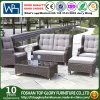 Outdoor PE Wicker Rattan Outdoor Furniture Garden Leisure Sofa and Table Set (TG-1509)