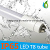 19W SMD2835 IP65 Waterproof T8 LED Tube Light 1.2m Tubes with Ce RoHS Approval
