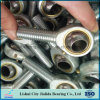 Good Quality Gcr15 Male Threaded Forging Rod End Bearing with Zinc Plating