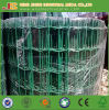 PVC Coated Euro Fence Holland Wire Mesh Fence Chick Fence Made in China