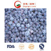 Good Quality IQF Frozen Blueberry