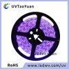UV LED SMD5050 SMD3528 395nm Soft Strip Light