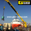Trade Assurance China Supplier Hydraulic or Electric Marine Tower Slewing Crane with Low Price