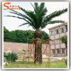 Wholesale Suppliers Lighted Palm Tree Artificial Indoor Trees Coconut