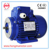 Aluminum Three Phase Induction AC Motor (112M-2-4KW)