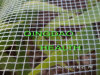 50X25mesh Anti-Insect Net