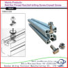 Carbon Steel Galvanized T Type Bolt