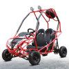 USA Popular DOT EPA Approval Hot Sales Buggy Go Kart Cart HD200-Gkf