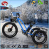 Fat Tire Electric Beach Tricycle with Double Rear Disk Brake