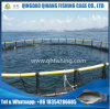 Tilapia Culture Fish Cage, HDPE Fish Farming Net Cage