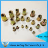 Aluminum/Stainless Steel/Carbon Steel Rivet Nut