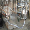 Portable Milker Small Dairy Plant Use Goat Milking Machine