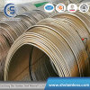 12mm Seamless Stainless Steel Coil Tube/Pipe