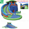 Commercial Amusement Inflatable Water Slides with Pool (BJ-AT81)