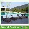 Rattan Wicker Used Hotel Pool Furniture