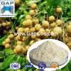 100% Natural Longan Juice Powder