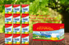 20g/250g Sachet Non Dairy Creamer Special for Africa