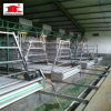 Wire Netting Chicken Cage for Poultry Farm