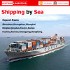 Container Ship From China to Worldwide (Container Ship)