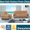 Best Quality Wholesale Price Home Furniture Leather Sofa (A828)