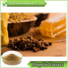 GMP Factory 100% Natural Water Solubility Propolis Extract