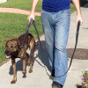 Double 2 Handles Nylon Rope Black Reflective Dog Pet Leash